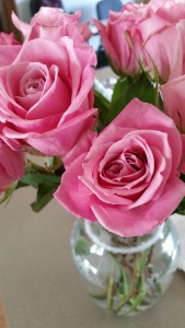 Some roses to appease you!